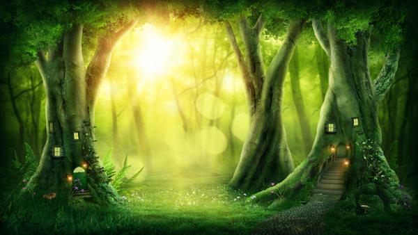 Fantasy kan foregå i en skov. Og hvem ved, hvad der kan gemme sig i skoven af magiske væsner?