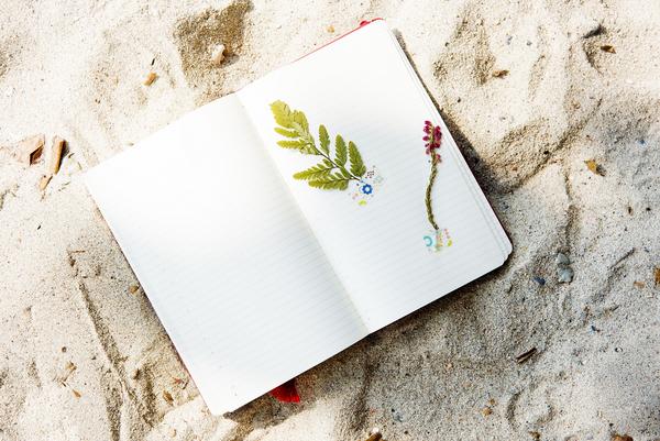 Udvælg en ganske almindelig dag, og skriv om den i en dagbog.
